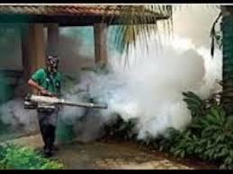 شركة رش مبيدات بالليث